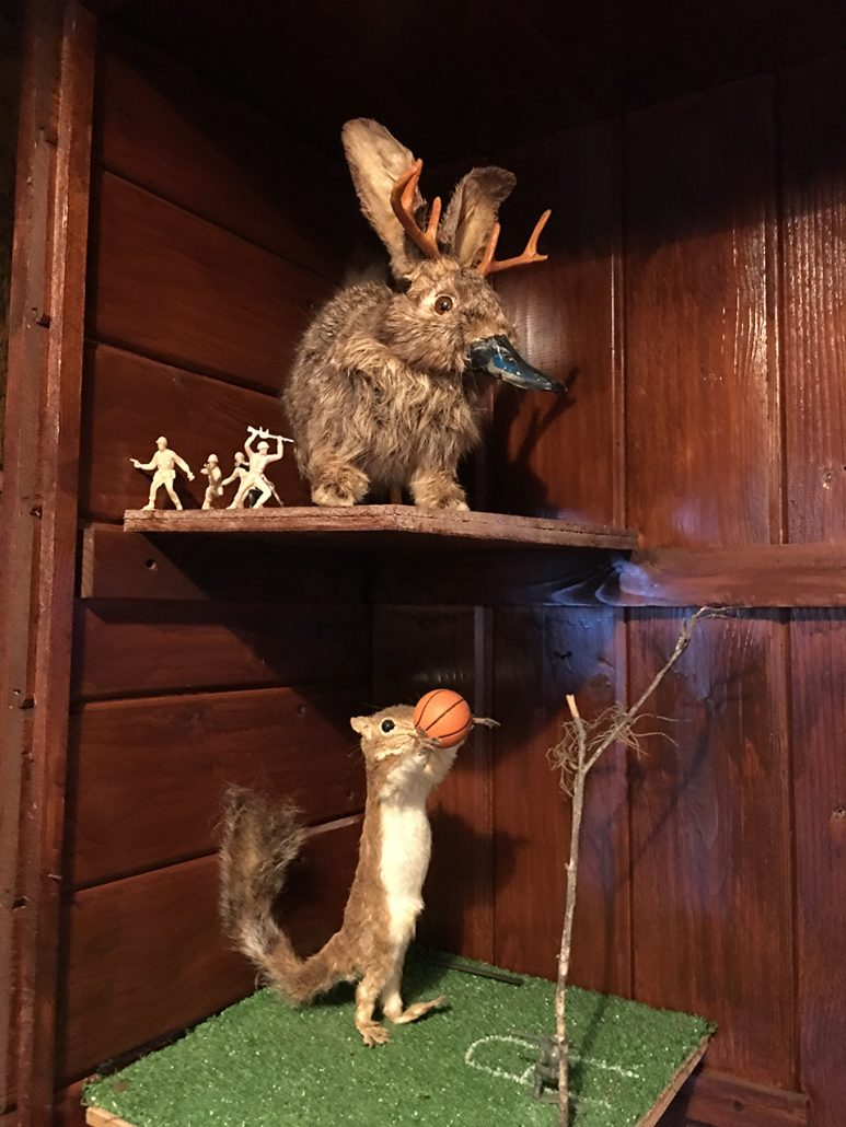 Weird taxidermy at the Linger Lodge, wheelchair accessible Bradenton, Florida.