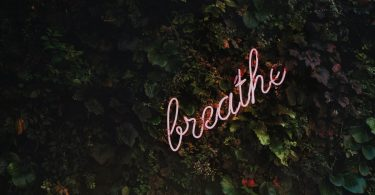 """Neon sign reading """"breathe"""" in trees"""