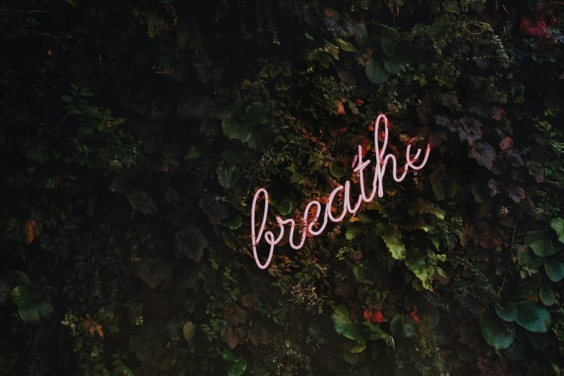 "Neon sign reading ""breathe"" in trees"